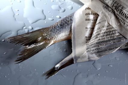 ¿El entierro de los periódicos de papel está a la vuelta de la esquina?