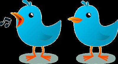Las 38 reglas de Twitter que sigo (casi) siempre